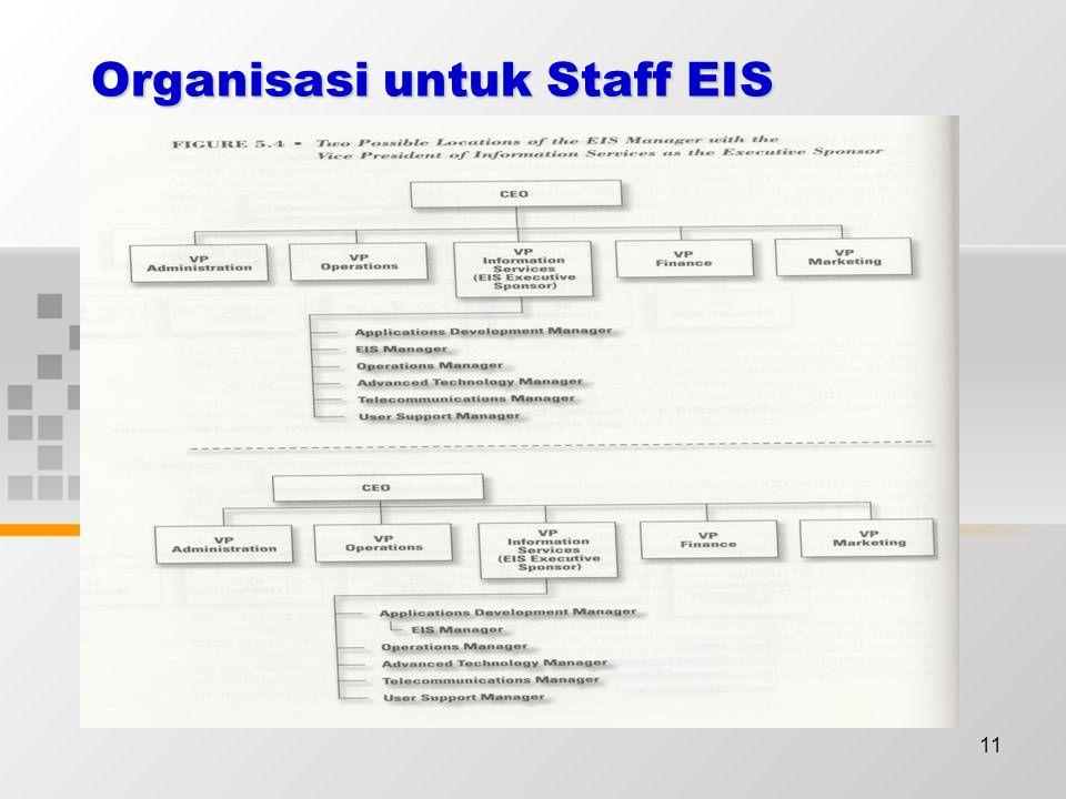 11 Organisasi untuk Staff EIS