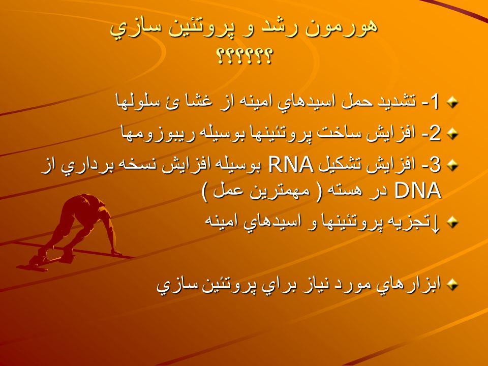 هورمون رشد و پروتئين سازي ؟؟؟؟؟؟ 1- تشديد حمل اسيدهاي امينه از غشا ئ سلولها 2- افزايش ساخت پروتئينها بوسيله ريبوزومها 3- افزايش تشكيل RNA بوسيله افزايش نسخه برداري از DNA در هسته ( مهمترين عمل ) ↓ تجزيه پروتئينها و اسيدهاي امينه ابزارهاي مورد نياز براي پروتئين سازي
