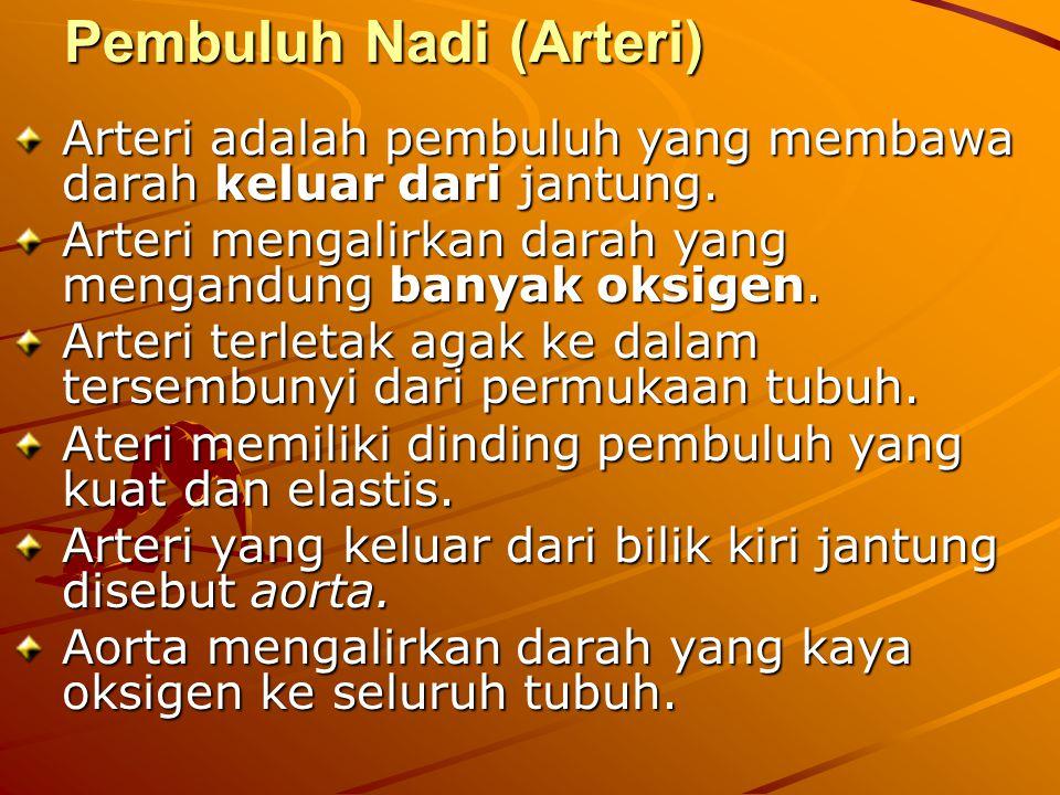 Pembuluh Nadi (Arteri) Arteri adalah pembuluh yang membawa darah keluar dari jantung.