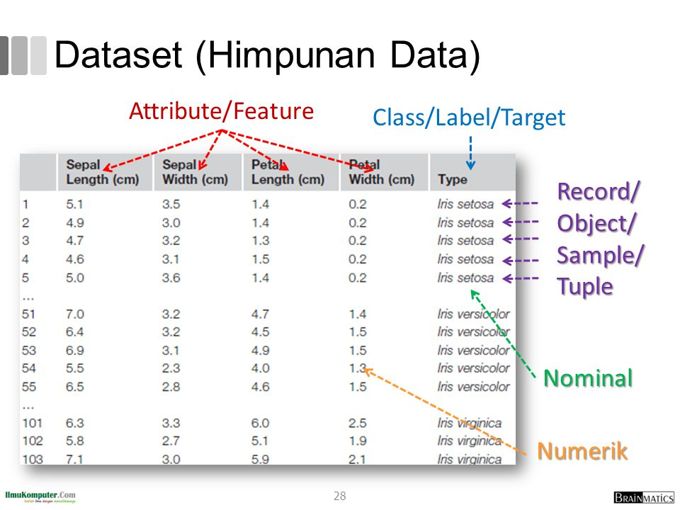 Dataset (Himpunan Data) Class/Label/Target Attribute/Feature Nominal Numerik Record/Object/Sample/Tuple 28