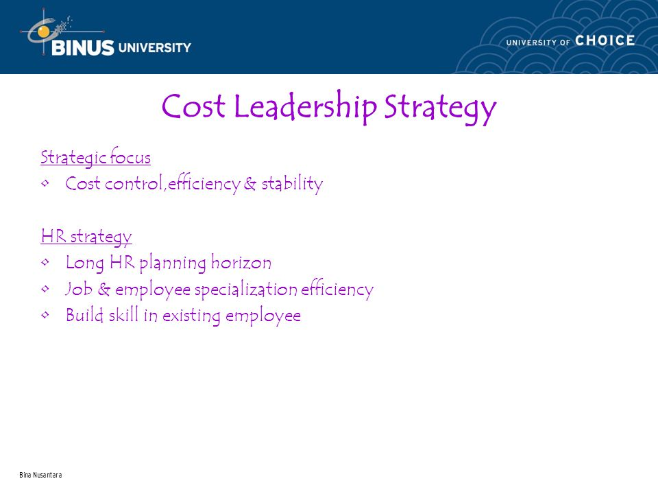 Bina Nusantara Cost Leadership Strategy Strategic focus Cost control,efficiency & stability HR strategy Long HR planning horizon Job & employee specialization efficiency Build skill in existing employee