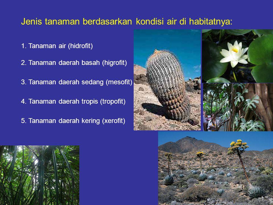 Jenis tanaman berdasarkan kondisi air di habitatnya: 1. Tanaman air (hidrofit) 2. Tanaman daerah basah (higrofit) 3. Tanaman daerah sedang (mesofit) 4