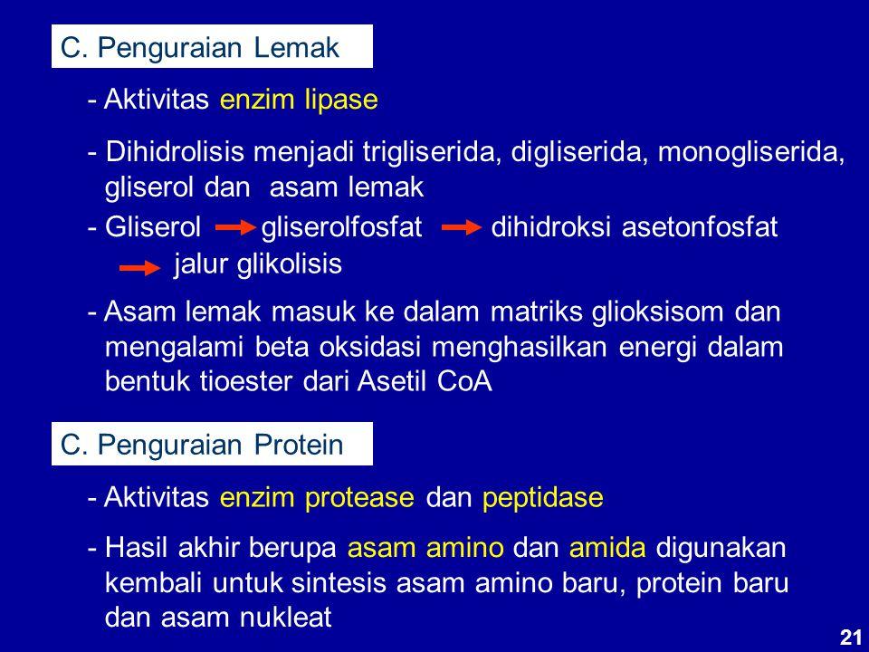 C. Penguraian Lemak - Aktivitas enzim lipase - Dihidrolisis menjadi trigliserida, digliserida, monogliserida, gliserol dan asam lemak - Gliserolgliser