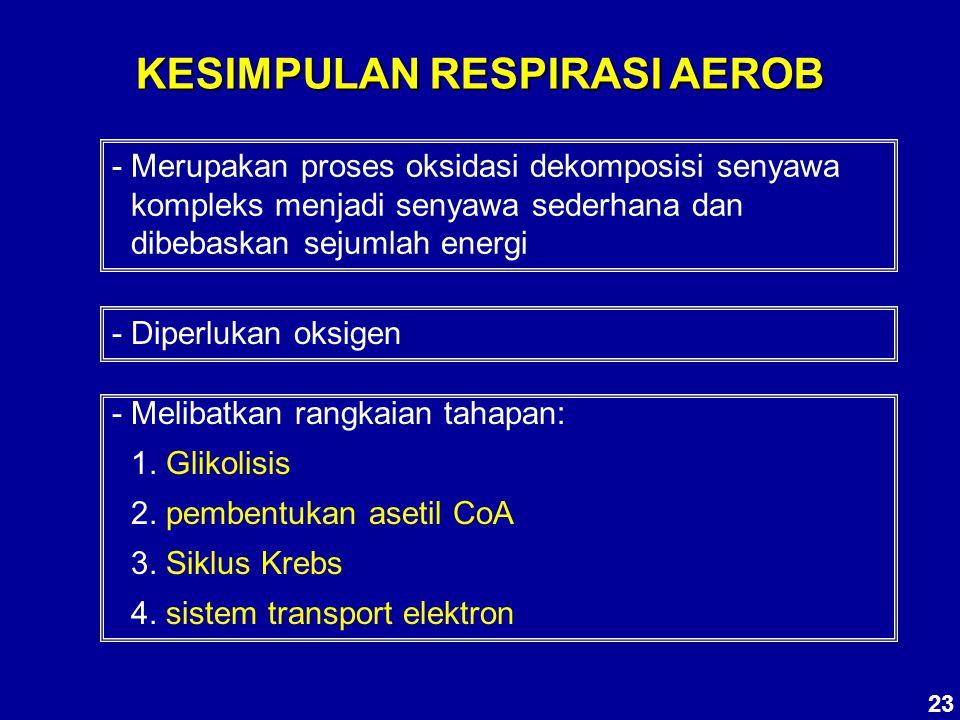 KESIMPULAN RESPIRASI AEROB - Merupakan proses oksidasi dekomposisi senyawa kompleks menjadi senyawa sederhana dan dibebaskan sejumlah energi - Diperlu