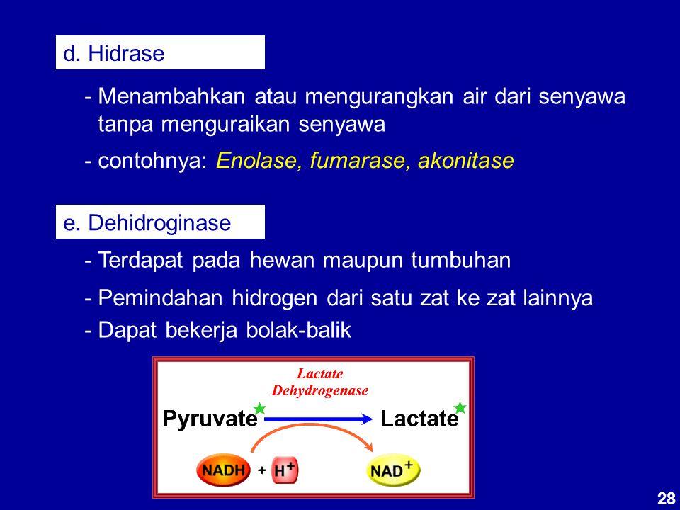 d. Hidrase - Menambahkan atau mengurangkan air dari senyawa tanpa menguraikan senyawa - contohnya: Enolase, fumarase, akonitase e. Dehidroginase - Ter