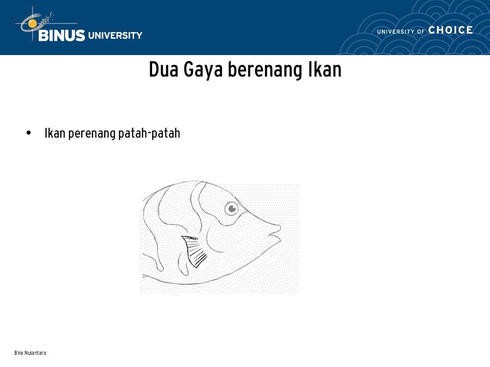 Bina Nusantara Dua Gaya berenang Ikan Ikan perenang patah-patah