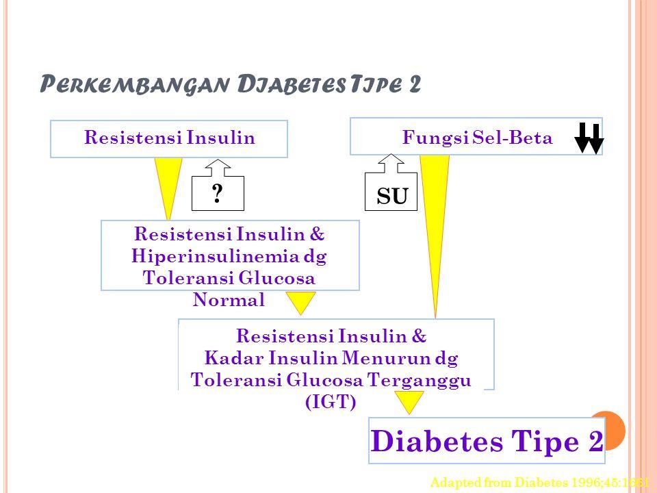 P ERKEMBANGAN D IABETES T IPE 2 Resistensi Insulin Resistensi Insulin & Hiperinsulinemia dg Toleransi Glucosa Normal Resistensi Insulin & Kadar Insuli