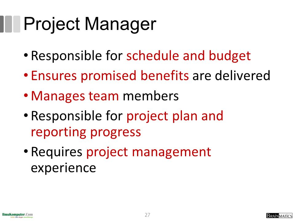 Project Manager Responsible for schedule and budget Ensures promised benefits are delivered Manages team members Responsible for project plan and repo