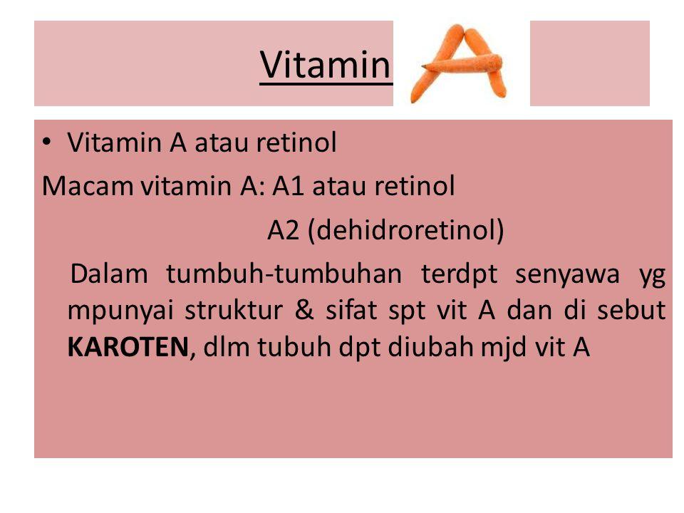 Vitamin A Vitamin A atau retinol Macam vitamin A: A1 atau retinol A2 (dehidroretinol) Dalam tumbuh-tumbuhan terdpt senyawa yg mpunyai struktur & sifat spt vit A dan di sebut KAROTEN, dlm tubuh dpt diubah mjd vit A
