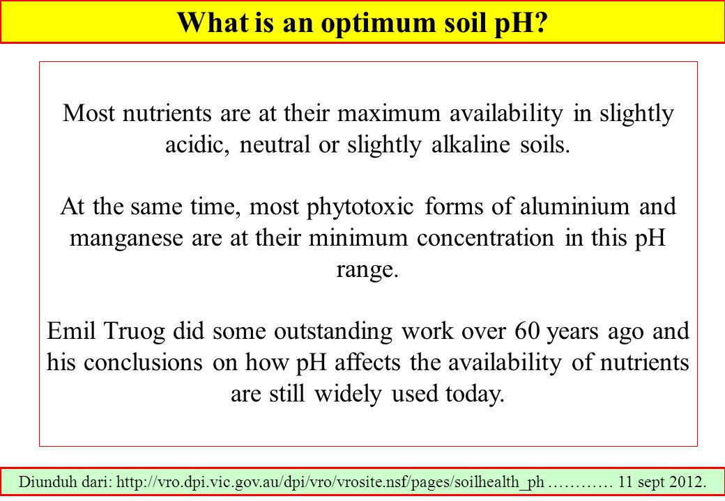 How to measure soil pH.