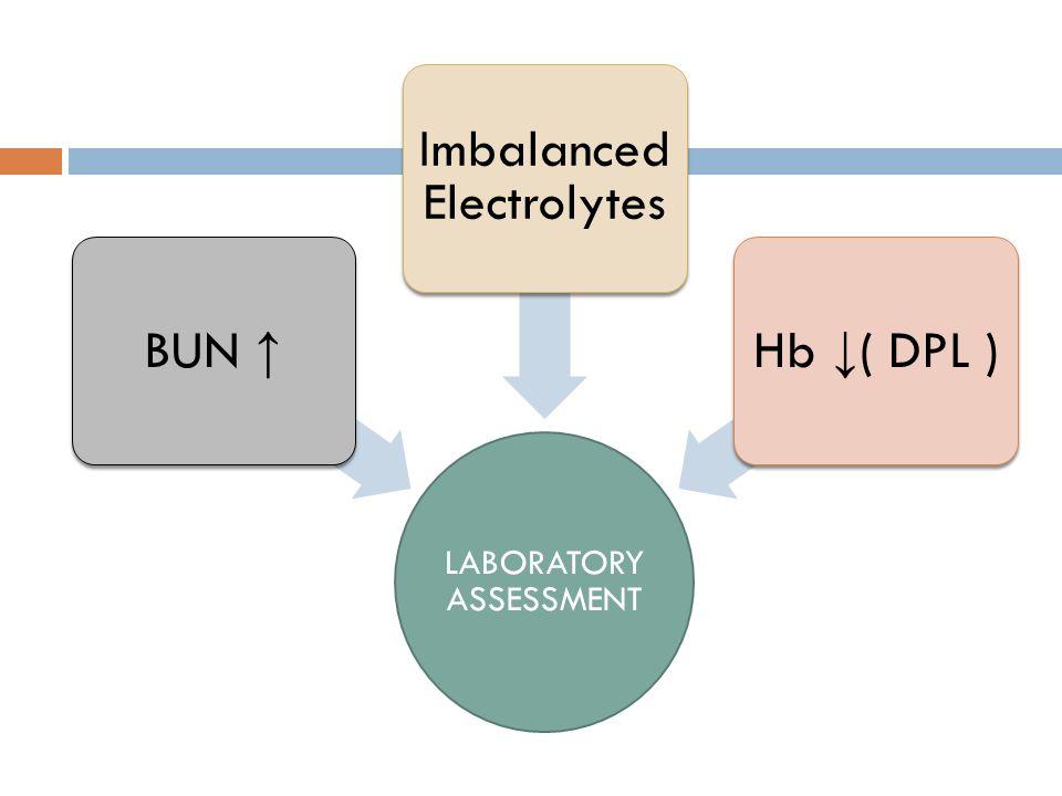 LABORATORY ASSESSMENT BUN ↑ Imbalanced Electrolytes Hb ↓ ( DPL )