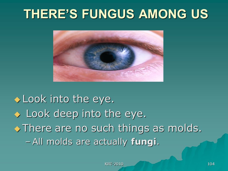 KRT-2010 104 THERE'S FUNGUS AMONG US THERE'S FUNGUS AMONG US  Look into the eye.  Look deep into the eye.  There are no such things as molds. –All