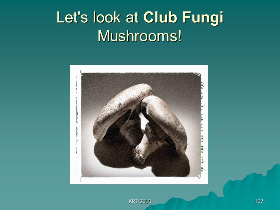 KRT-2010 107 Let s look at Club Fungi Mushrooms!
