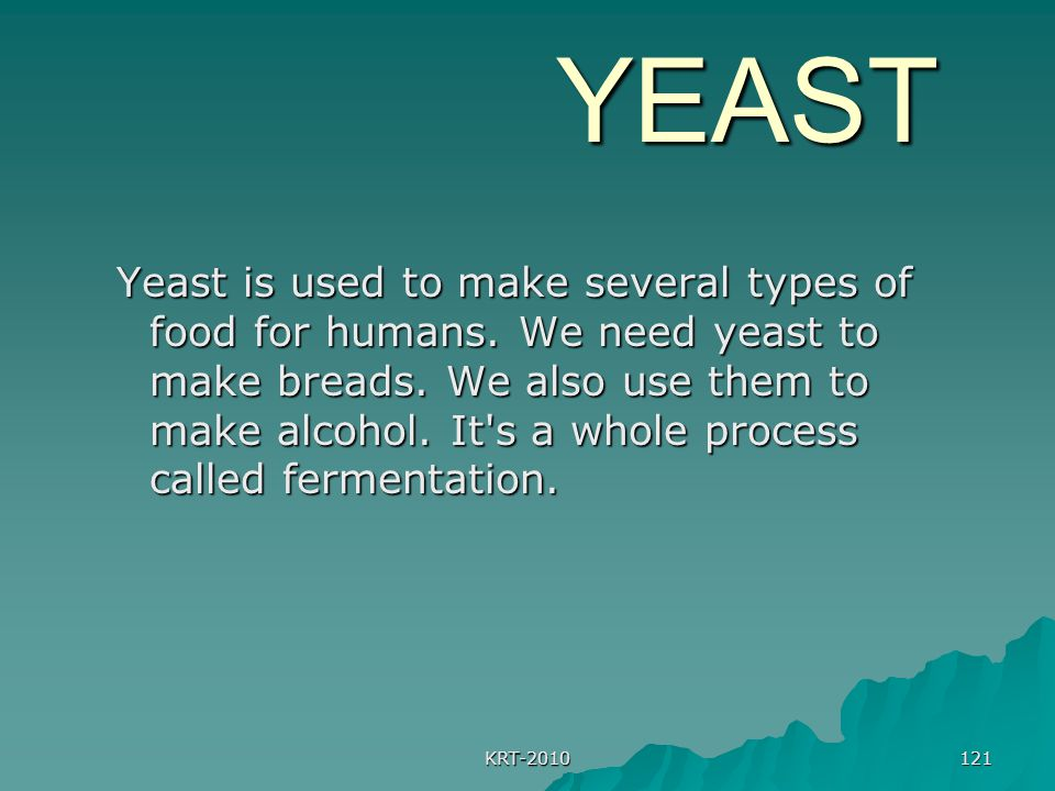 KRT-2010 121 YEAST YEAST Yeast is used to make several types of food for humans.