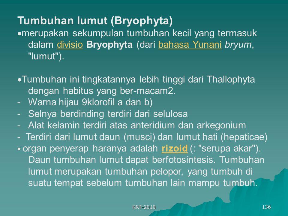 KRT-2010 136 Tumbuhan lumut (Bryophyta)  merupakan sekumpulan tumbuhan kecil yang termasuk dalam divisio Bryophyta (dari bahasa Yunani bryum,
