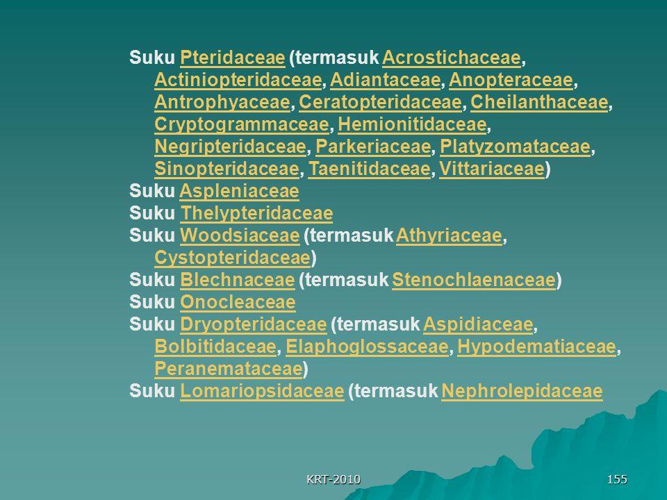 KRT-2010 155 Suku Pteridaceae (termasuk Acrostichaceae, Actiniopteridaceae, Adiantaceae, Anopteraceae, Antrophyaceae, Ceratopteridaceae, Cheilanthaceae, Cryptogrammaceae, Hemionitidaceae, Negripteridaceae, Parkeriaceae, Platyzomataceae, Sinopteridaceae, Taenitidaceae, Vittariaceae)PteridaceaeAcrostichaceae ActiniopteridaceaeAdiantaceaeAnopteraceae AntrophyaceaeCeratopteridaceaeCheilanthaceae CryptogrammaceaeHemionitidaceae NegripteridaceaeParkeriaceaePlatyzomataceae SinopteridaceaeTaenitidaceaeVittariaceae Suku AspleniaceaeAspleniaceae Suku ThelypteridaceaeThelypteridaceae Suku Woodsiaceae (termasuk Athyriaceae, Cystopteridaceae)WoodsiaceaeAthyriaceae Cystopteridaceae Suku Blechnaceae (termasuk Stenochlaenaceae)BlechnaceaeStenochlaenaceae Suku OnocleaceaeOnocleaceae Suku Dryopteridaceae (termasuk Aspidiaceae, Bolbitidaceae, Elaphoglossaceae, Hypodematiaceae, Peranemataceae)DryopteridaceaeAspidiaceae BolbitidaceaeElaphoglossaceaeHypodematiaceae Peranemataceae Suku Lomariopsidaceae (termasuk NephrolepidaceaeLomariopsidaceaeNephrolepidaceae