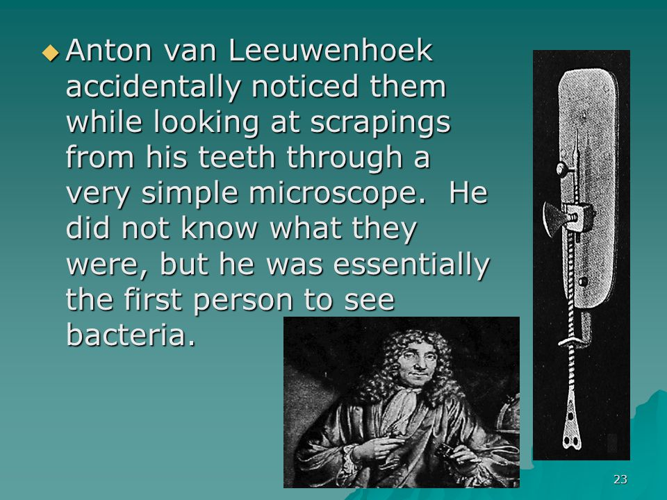 KRT-2010 23  Anton van Leeuwenhoek accidentally noticed them while looking at scrapings from his teeth through a very simple microscope.