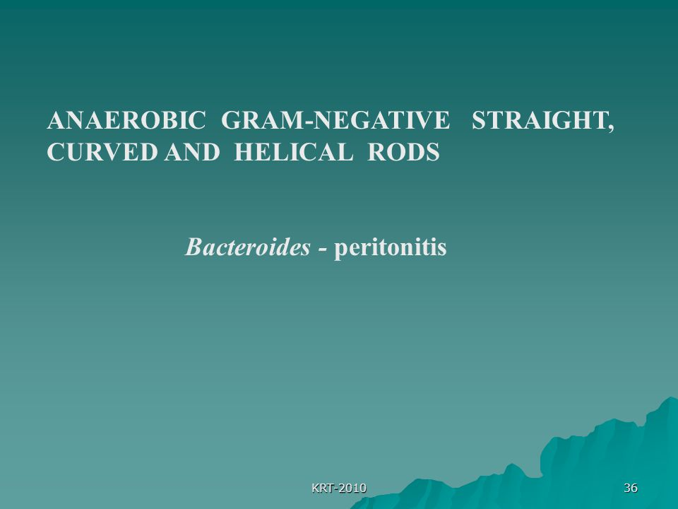 KRT-2010 36 ANAEROBIC GRAM-NEGATIVE STRAIGHT, CURVED AND HELICAL RODS Bacteroides - peritonitis