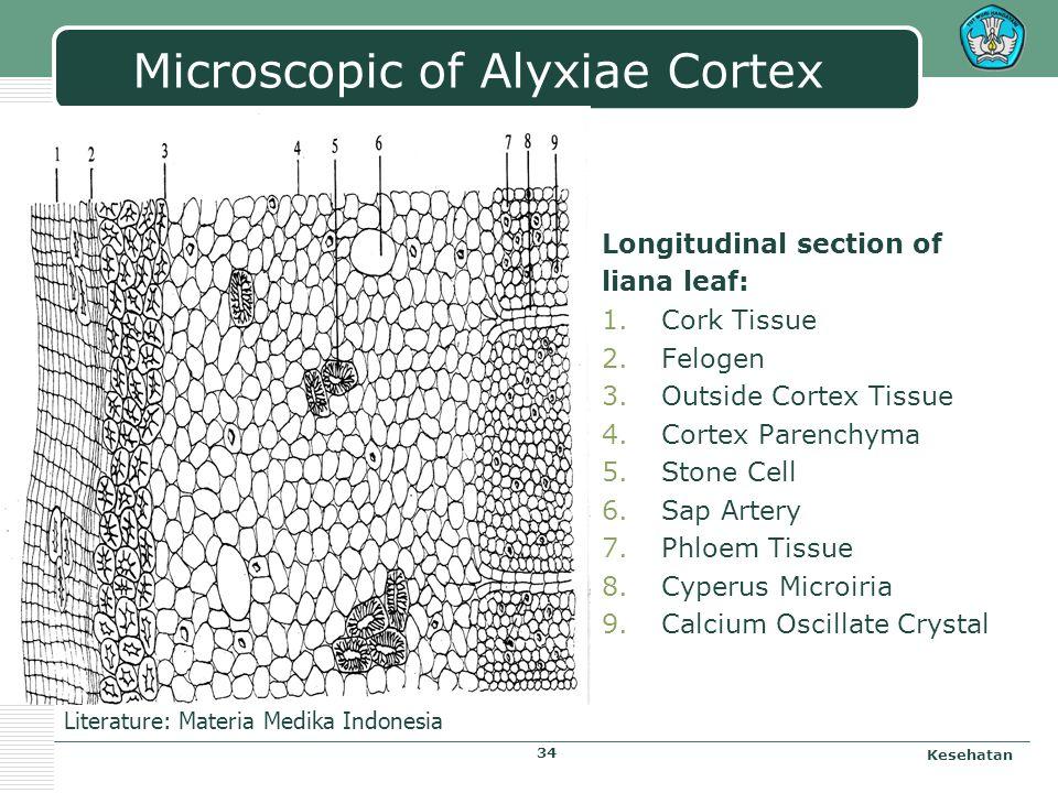 Alyxiae Cortex Kesehatan 33 Name of Simplicia: Alyxiae Cortex Nama Indonesia : Kulit pulasari Name of Plane: Alyxia reinwardtii Bl. Familia: Apocynace
