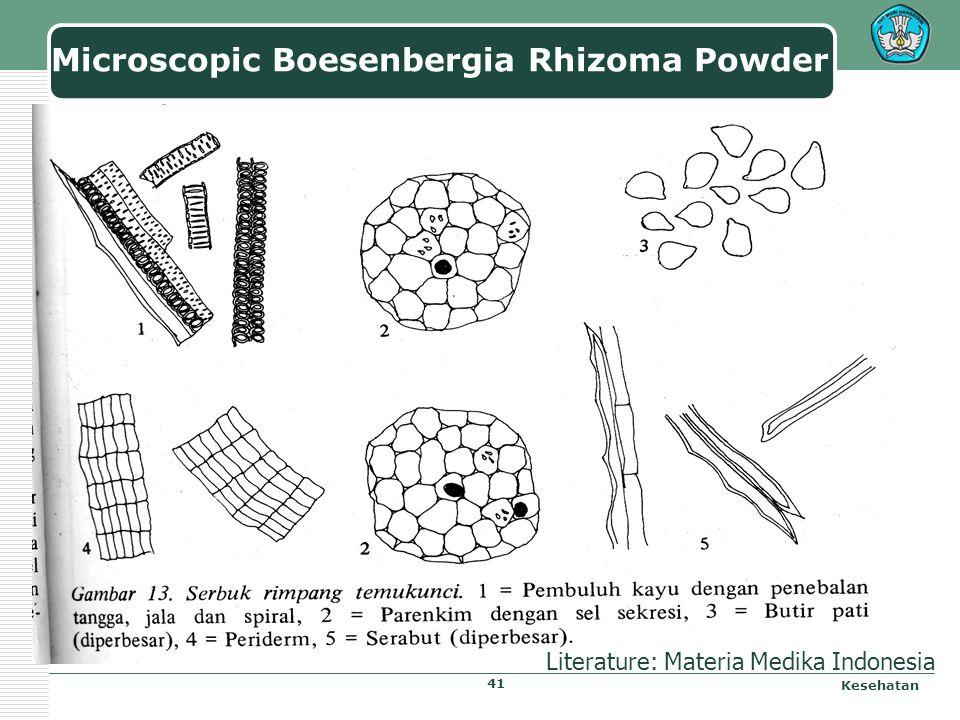 Microscopic Boesenbergia Rhizoma Kesehatan Literature: Materia Medika Indonesia 40