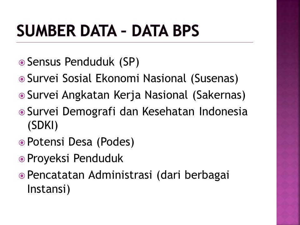  Sensus Penduduk (SP)  Survei Sosial Ekonomi Nasional (Susenas)  Survei Angkatan Kerja Nasional (Sakernas)  Survei Demografi dan Kesehatan Indones