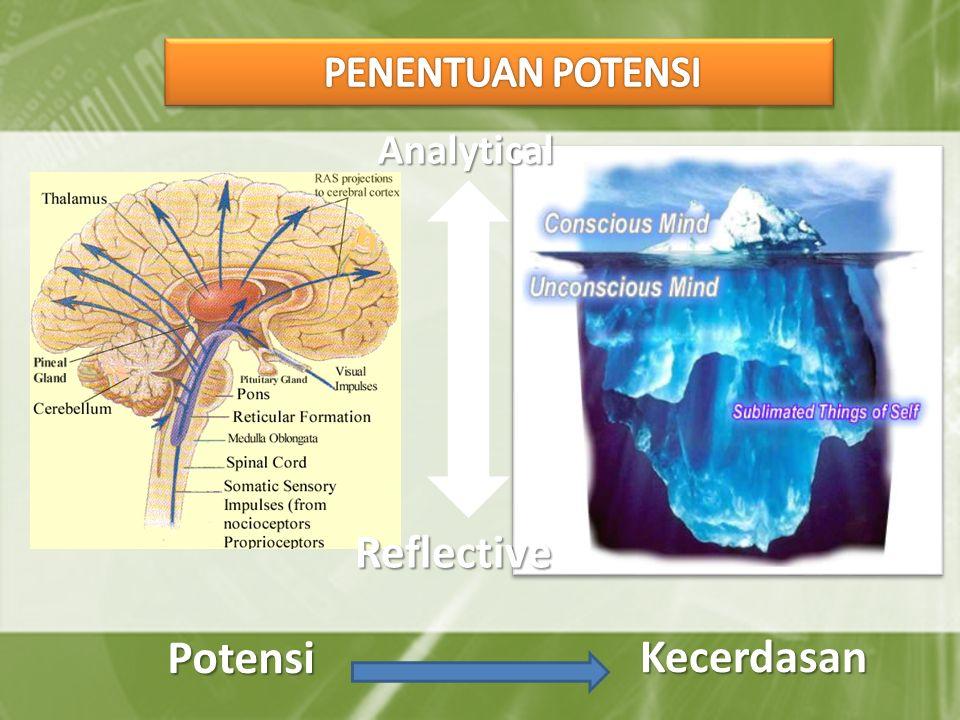 Reflective Analytical Potensi Kecerdasan