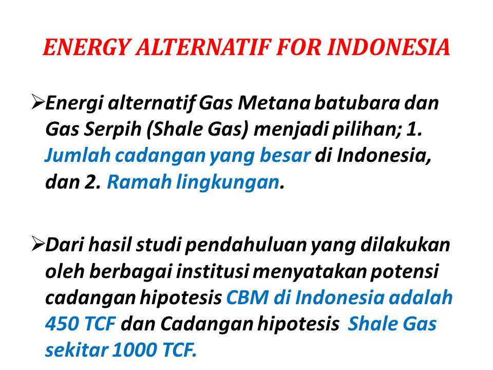 ENERGY ALTERNATIF FOR INDONESIA  Energi alternatif Gas Metana batubara dan Gas Serpih (Shale Gas) menjadi pilihan; 1. Jumlah cadangan yang besar di I