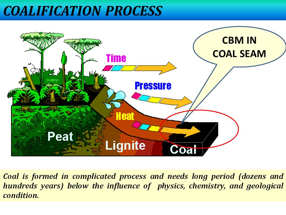 COALIFICATION PROCESS CBM IN COAL SEAM Coal is formed in complicated process and needs long period (dozens and hundreds years) below the influence of physics, chemistry, and geological condition.