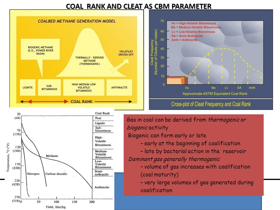 COAL RANK AND CLEAT AS CBM PARAMETER Gas in coal can be derived from thermogenic or biogenic activity Biogenic can form early or late – early at the b