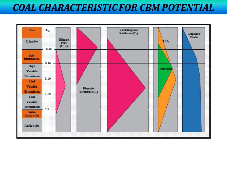 COAL CHARACTERISTIC FOR CBM POTENTIAL