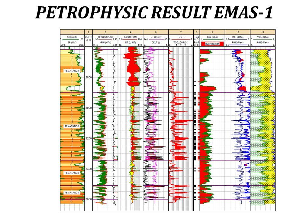 PETROPHYSIC RESULT EMAS-1
