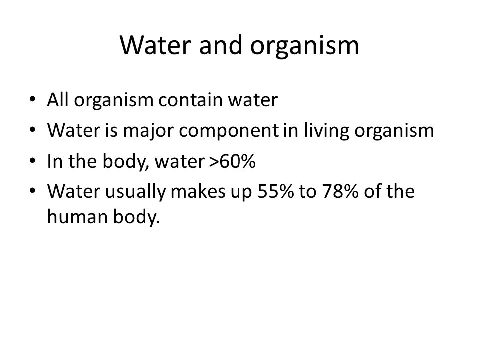 Water in our body About two-thirds of the weight of an adult human consists of water.