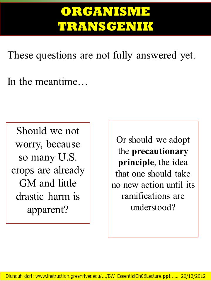 These questions are not fully answered yet. In the meantime… Should we not worry, because so many U.S. crops are already GM and little drastic harm is