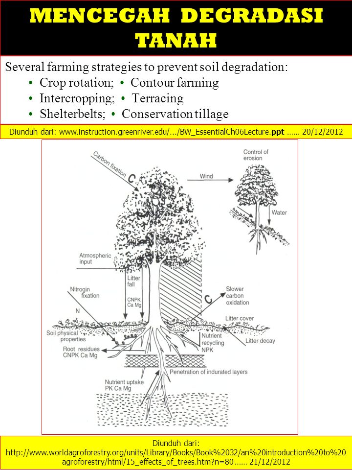 Several farming strategies to prevent soil degradation: Crop rotation; Contour farming Intercropping; Terracing Shelterbelts; Conservation tillage Diu