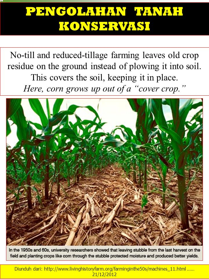No-till and reduced-tillage farming leaves old crop residue on the ground instead of plowing it into soil. This covers the soil, keeping it in place.