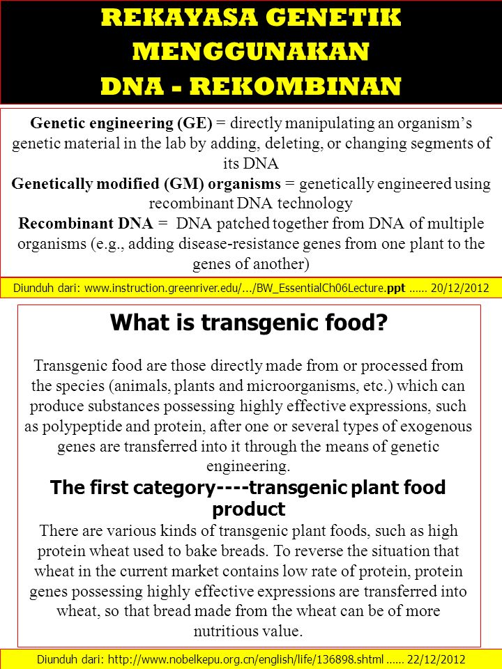 Genetic engineering (GE) = directly manipulating an organism's genetic material in the lab by adding, deleting, or changing segments of its DNA Geneti