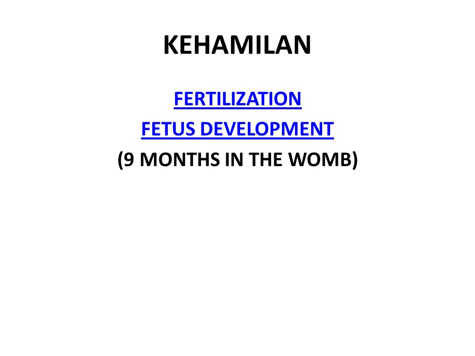 KEHAMILAN FERTILIZATION FETUS DEVELOPMENT (9 MONTHS IN THE WOMB)