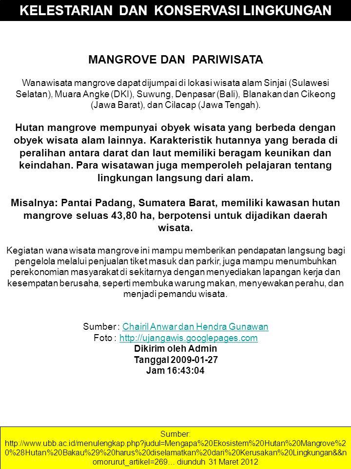 MANGROVE DAN PARIWISATA Wanawisata mangrove dapat dijumpai di lokasi wisata alam Sinjai (Sulawesi Selatan), Muara Angke (DKI), Suwung, Denpasar (Bali)
