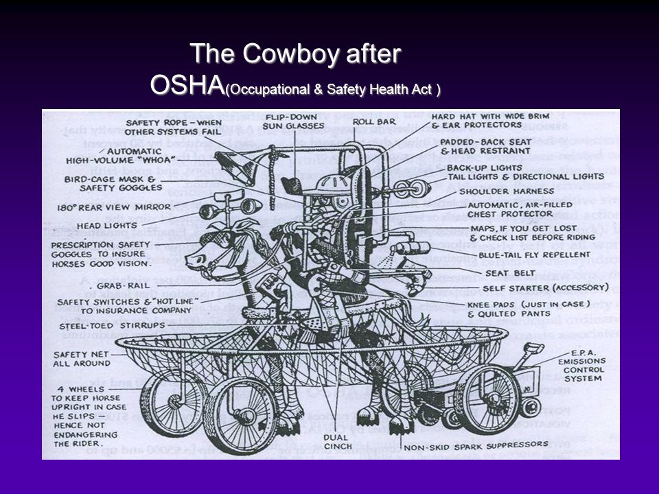 The Cowboy after OSHA (Occupational & Safety Health Act )