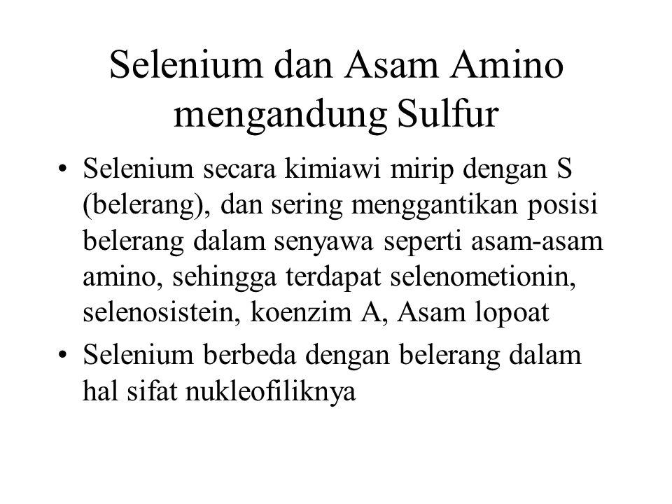 Selenium dan Asam Amino mengandung Sulfur Selenium secara kimiawi mirip dengan S (belerang), dan sering menggantikan posisi belerang dalam senyawa sep