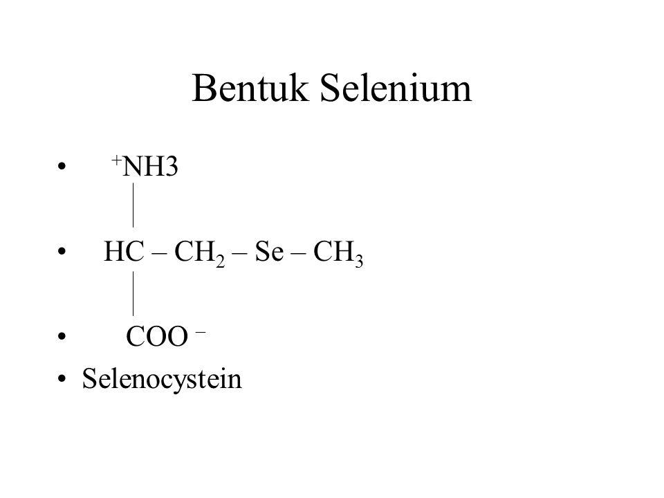 Bentuk Selenium + NH3 HC – CH 2 – Se – CH 3 COO – Selenocystein