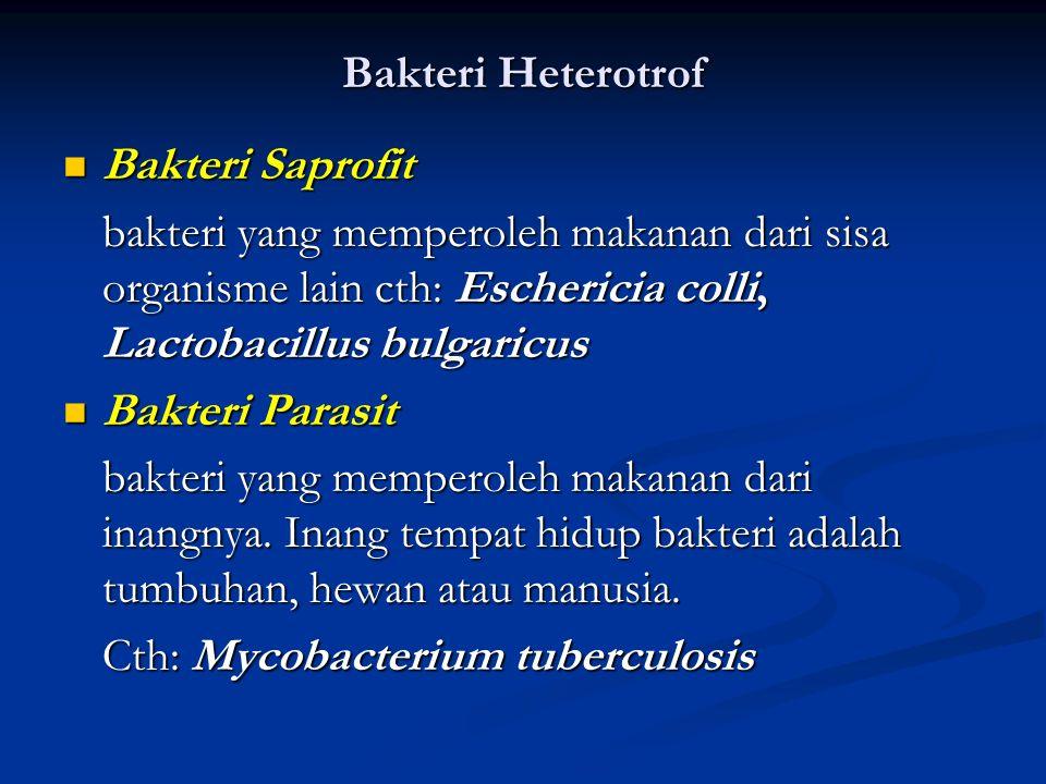 Life Cycle Nutrition Autotrof Fotoautotrof Kemoautotrof Hetetrof Saprofit Parasit Respiration Aerob Anaerob Facultative Anaerob Obligat Anaerob Cell W