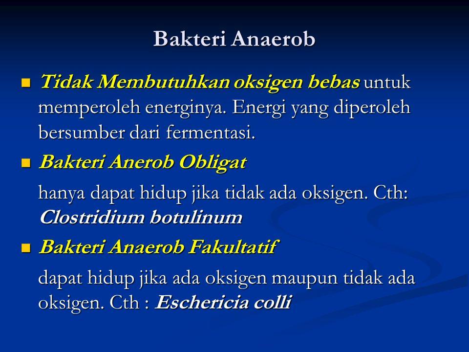 Bakteri Aerob Membutuhkan oksigen bebas untuk memperoleh energinya. Cth: Nitrosomonas, Nitrosoccus. Membutuhkan oksigen bebas untuk memperoleh energin
