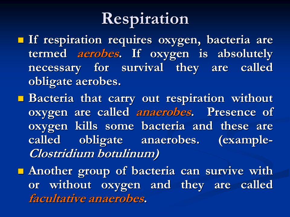 Bakteri Anaerob Tidak Membutuhkan oksigen bebas untuk memperoleh energinya. Energi yang diperoleh bersumber dari fermentasi. Tidak Membutuhkan oksigen