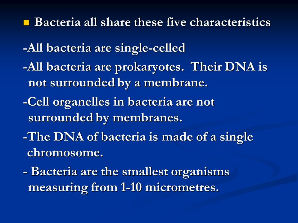 Nutrition Most eubacteria are heterotrophs and obtain energy by breaking down organic molecules from their environment.