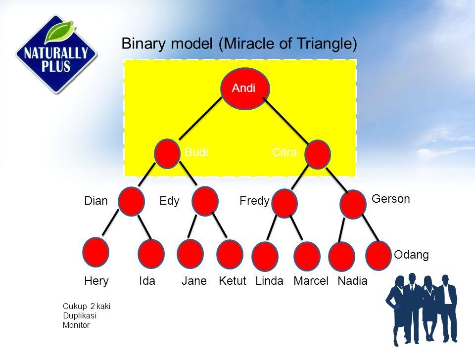 Binary model (Miracle of Triangle) Cukup 2 kaki Duplikasi Monitor Andi Budi DianEdyFredy Gerson Citra HeryIdaJaneKetutLindaMarcelNadia Odang