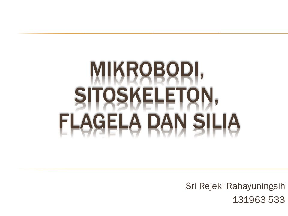 Sri Rejeki Rahayuningsih 131963 533