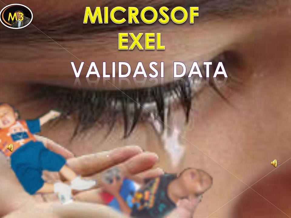 Salah satu fasilitas yang sangat membantu dalam proses pemasukan data adalah fasilitas untuk mengecek dan memvalidasi data.