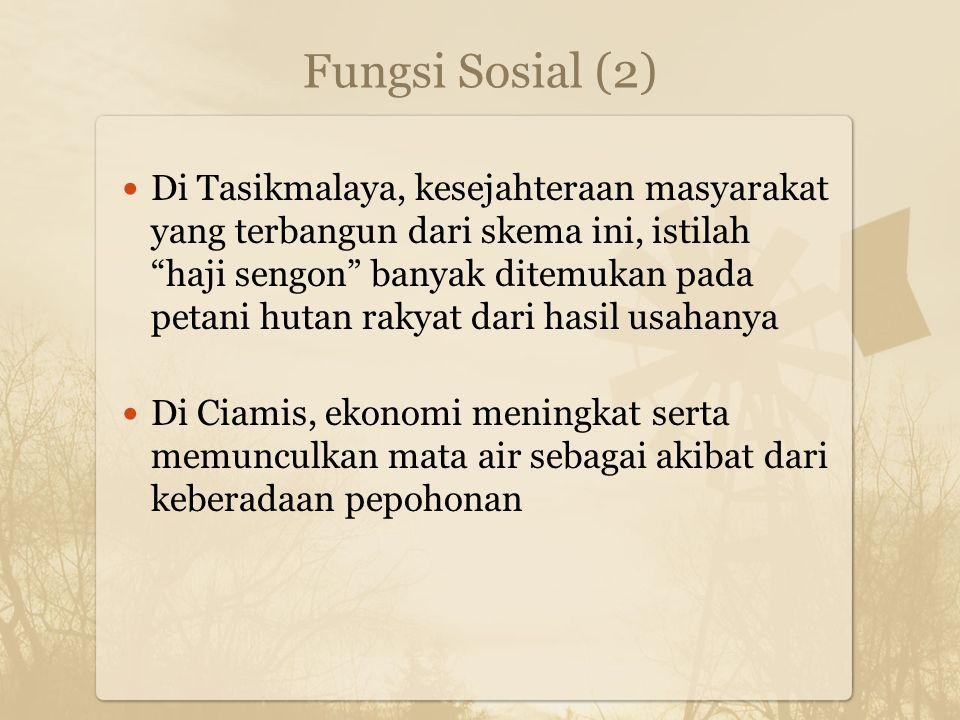 "Fungsi Sosial (2) Di Tasikmalaya, kesejahteraan masyarakat yang terbangun dari skema ini, istilah ""haji sengon"" banyak ditemukan pada petani hutan rak"