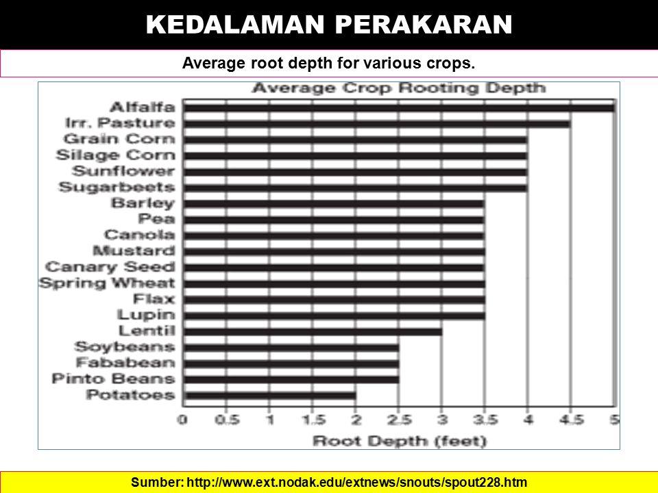 KEDALAMAN PERAKARAN Average root depth for various crops. Sumber: http://www.ext.nodak.edu/extnews/snouts/spout228.htm